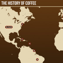 The History of Coffee- Parcel Coffee Infographic