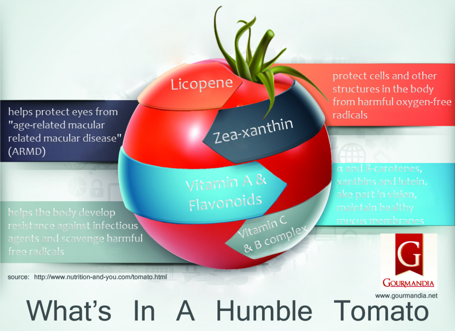 The Humble Tomato Infographic