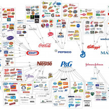 The Illusion Of Choice Infographic