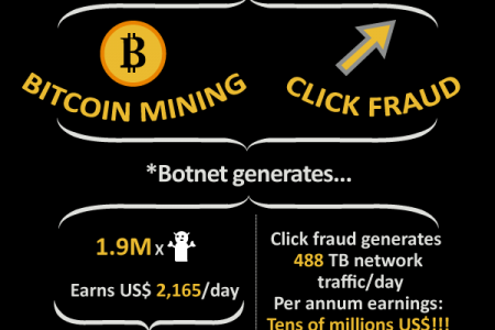 The Impact of the ZeroAccess Botnet Infographic