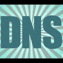 The Importance of DNS Infographic