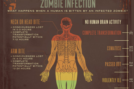The InsureAnts.co.uk Zombie Invasion Survival Guide Infographic