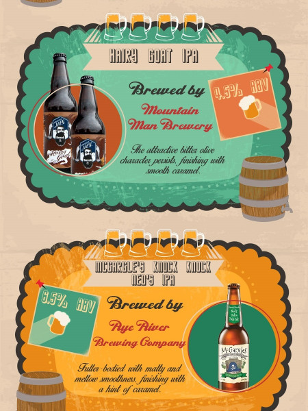 The Top Irish Craft Beers You Should be Drinking on St. Patrick Day Infographic