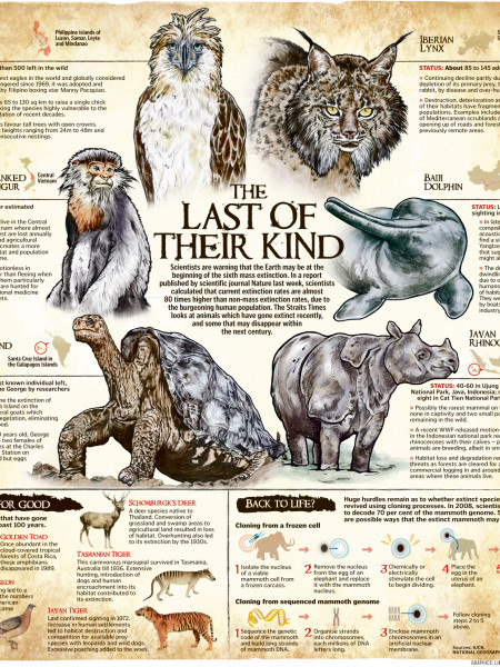 The Last of Their Kind Infographic