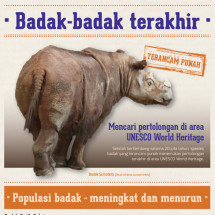 The last rhinoceros (in Bahasa Indonesia) Infographic