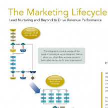 The Marketing Lifecycle Infographic