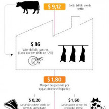 The Meat Industry in Red Infographic