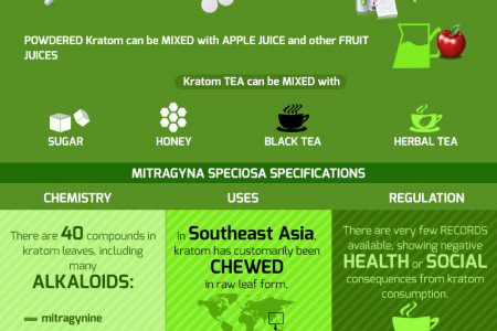 The Medicinal Wonders of M. Speciosa! Infographic