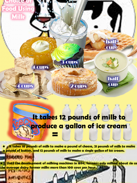 The Milk Factory Infographic
