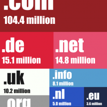 The Most Popular Domains Infographic