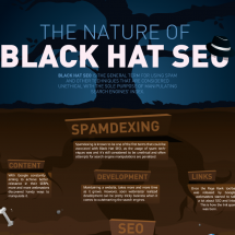 The Nature of Black Hat SEO Infographic