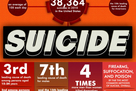 The Numbers Involving Suicide in the US Infographic