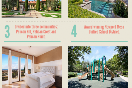 The Pelican Hill Lifestyle Infographic
