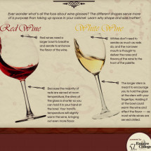 The Perfect Sip Infographic