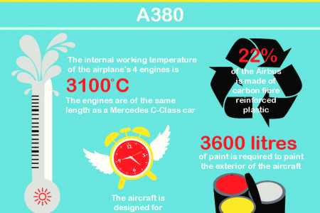 The Plane Facts Infographic