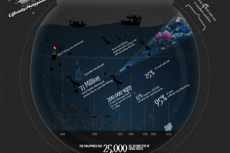 The Plunder of the Philippine Coral Reefs Infographic