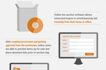 THE POPULARITY AND MECHANICS OF ONLINE AUCTIONS  Infographic