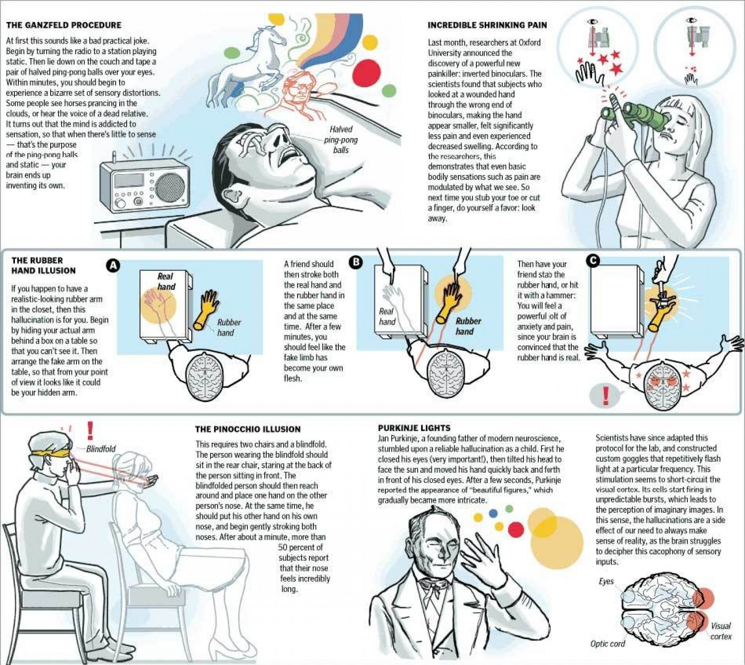 The Power of the Mind Infographic