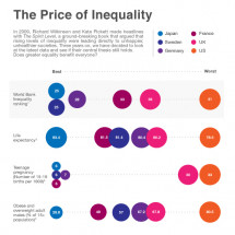 The Price of Inequality Infographic
