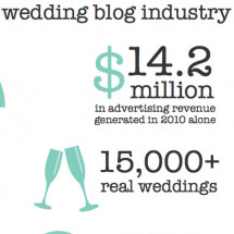 the professional wedding blog industry Infographic