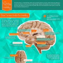 The Psychology of Gambling Infographic