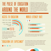 The Pulse Of Education Around The World Infographic
