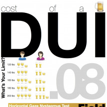 The Real Cost of a DUI Infographic