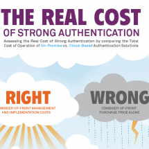 The Real Cost of Strong Authentication Infographic