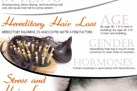 The Reasons Why You are Losing Your Hair [Infographic] Infographic
