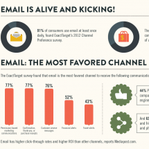 The Reign of Email Infographic