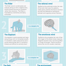 The Rider, The Elephant, and The Path Infographic