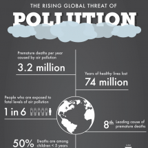 The Rising Global Threat of Pollution Infographic