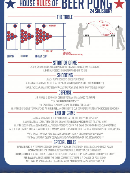 The Rules of Beer Pong Infographic