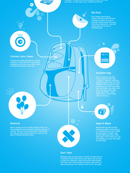 The Savvy Traveller Infographic