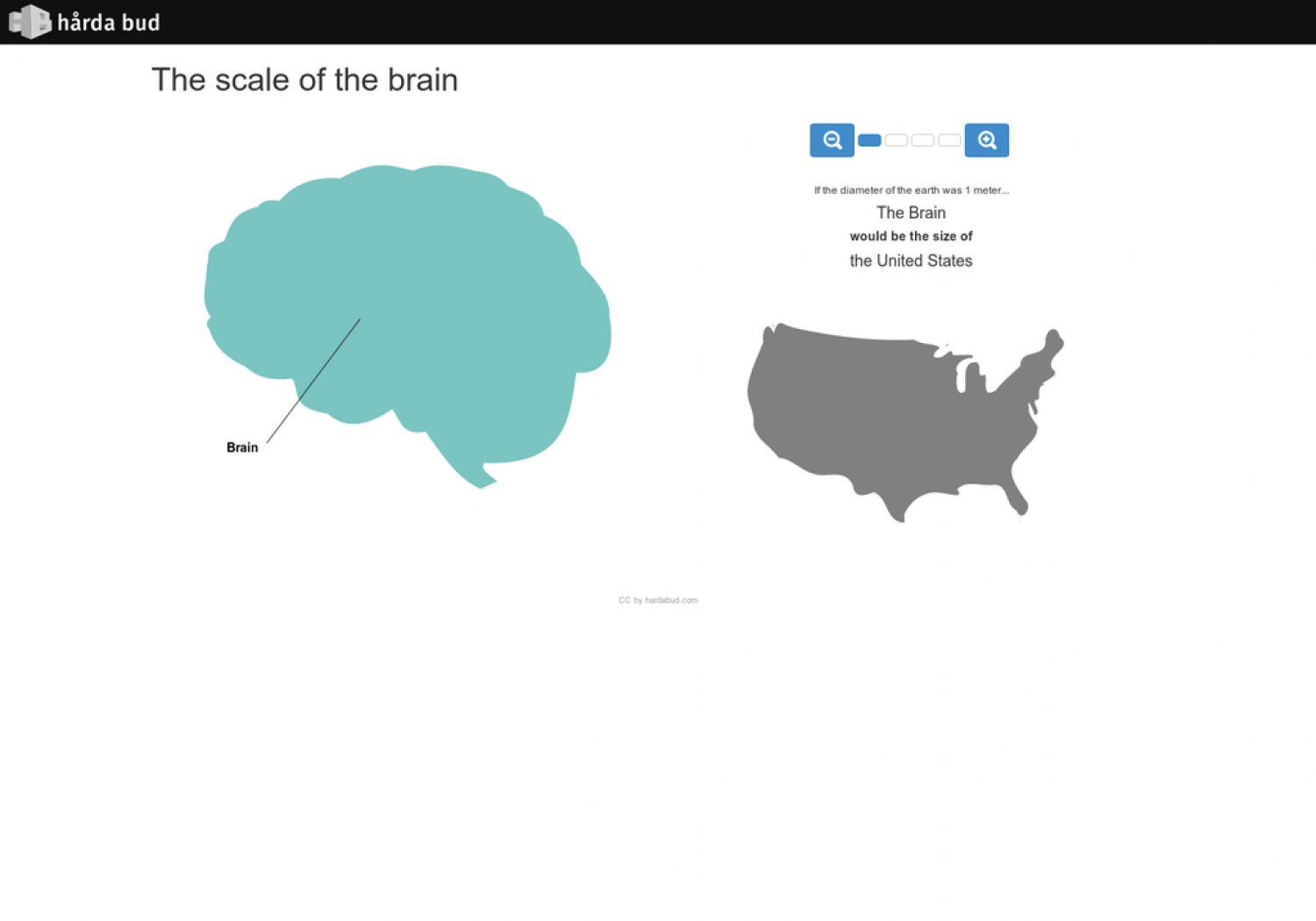 The Scale of The Brain Infographic
