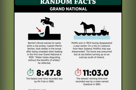 The Scale of the Grand National  Infographic