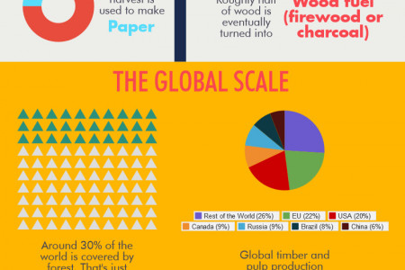 The Scale of Worldwide Timber Production Infographic