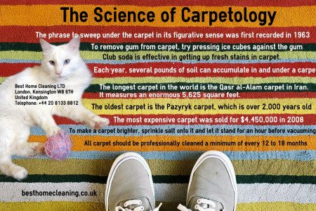 The Science of Carpetology Infographic