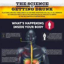 The Science of Getting Drunk Infographic