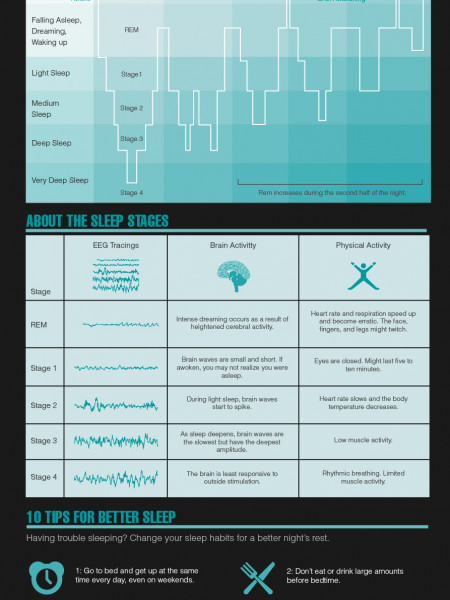 The Science of Sleep Infographic