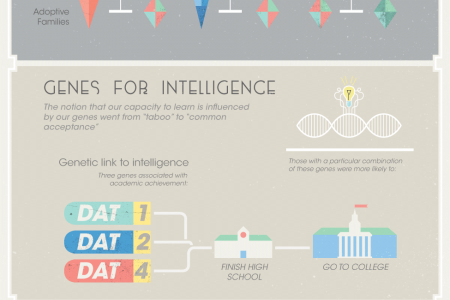The Science of Smart Infographic