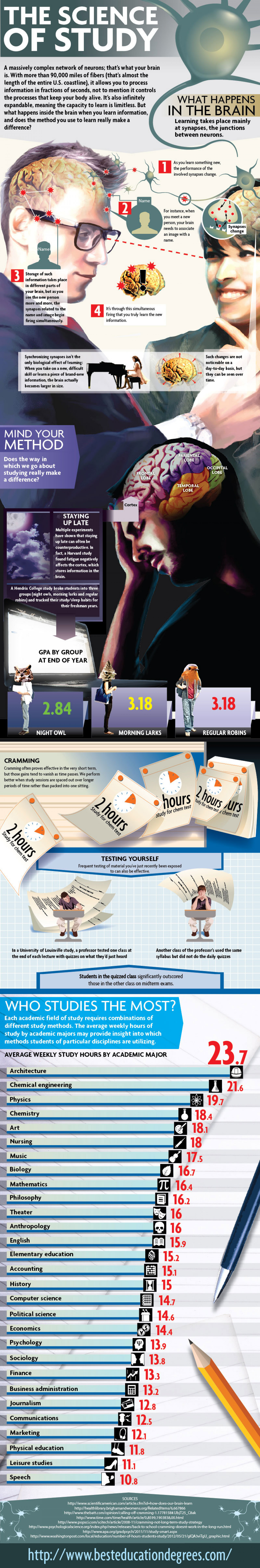 The Science of Study Infographic