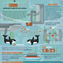 The Secret to a Sound Ocean Infographic