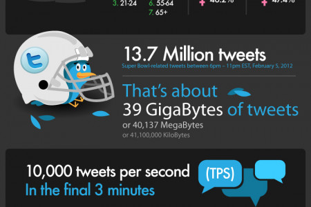 The Social Bowl: Data & the Superbowl Infographic