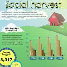 The Social Harvest Infographic