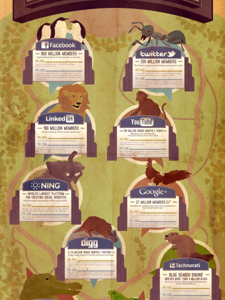 The Social Media Zoo Infographic