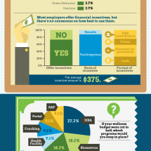 The State of Corporate Wellness Programs Infographic