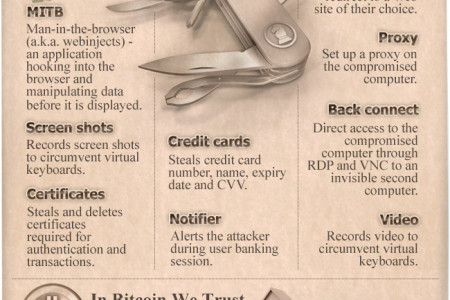The State of Financial Trojans 2013 Infographic