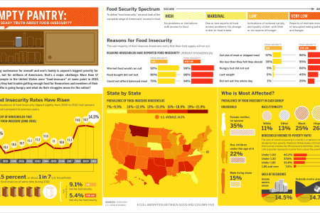 The State Of Food Insecurity Infographic