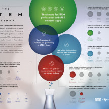 The STEM Dilemma Infographic